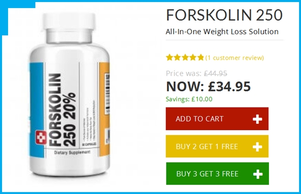 Koop Forskolin 250 - Forskolin 250 Door Bauer Nutrition Review - Is het een Scam of Legit?