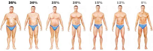 body-fat-level