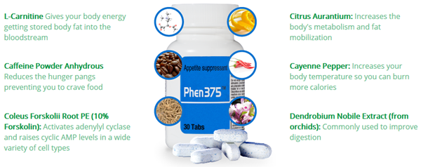 Phen375-ingrediente-complete